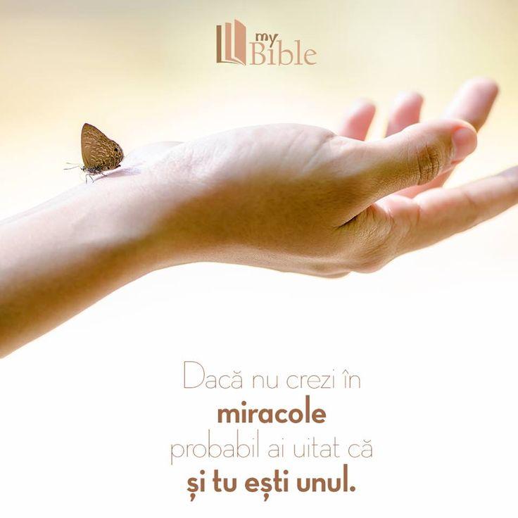 Tu esti miracolul lui Dumnezeu. Citeste Biblia si devotionalul online.