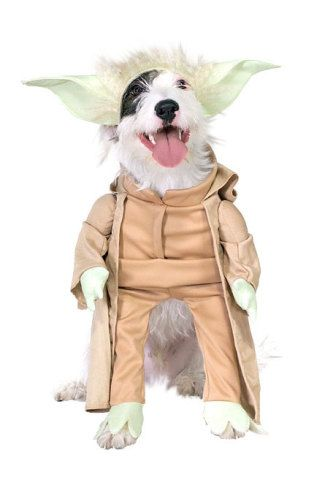 dog couture costumes | Pet Couture: The Ultimate In Star Wars Dog Costumes