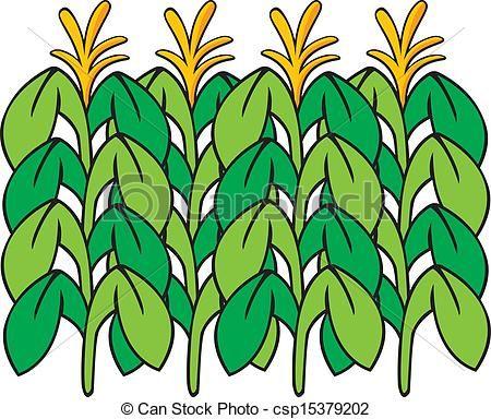 15 best paint images on pinterest clip art illustrations and rh pinterest com cornfield clip art free
