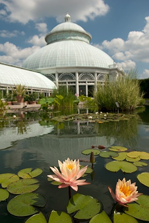 1000 Images About Bronx Images On Pinterest New York Ny Botanical Garden And Islands