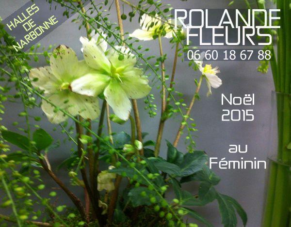 Pour ces fêtes de fin d'année, noël 2015 et nouvel an, à l'étal aux halles de Narbonne, Rolande est à votre écoute pour réaliser selon vos souhaits et vos désirs des bouquets personnalisés de fleurs fraiches de saison. Comblez et gâtez vos proches, vos...