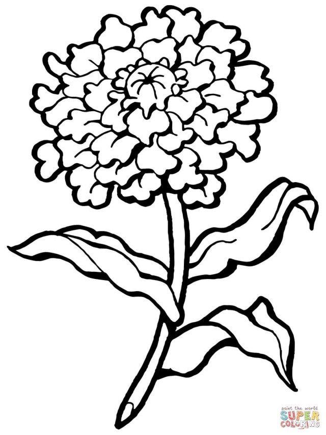 21 Brilliant Picture Of Flowers Coloring Pages Flower Coloring