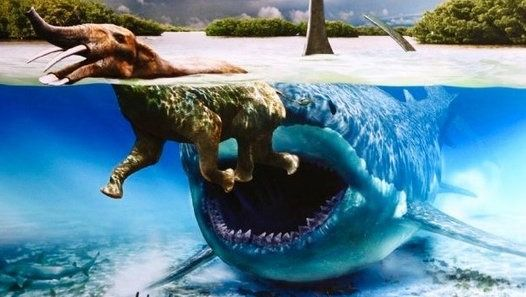 Real Megalodon Shark Sightings! Biggest Sharks of All Time Megalodons are World's largest sharks ever! These giant sea monsters didn't go extinct! These mysterious creatures are still alive! You'll believe in megalodons existence after this video cause you'll see real megalodon evidence. The enormous beings still lurk in the ocean ...and it's really scary..because these sharks are abnormally large ... and actually no other shark is so huge even great whites or whale sharks... megalodon…