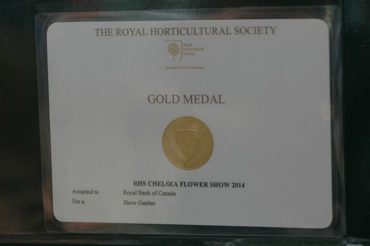 Gold medal for Hugo Bugg