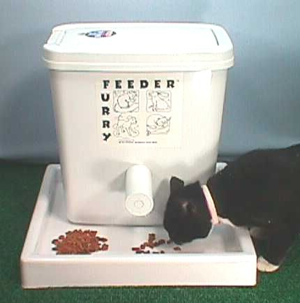 Best Auto Cat Feeder With Slow Feed