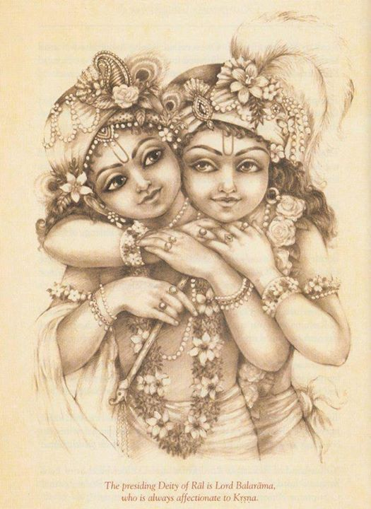 Lotus-Eyed Sri Krishna : Photo