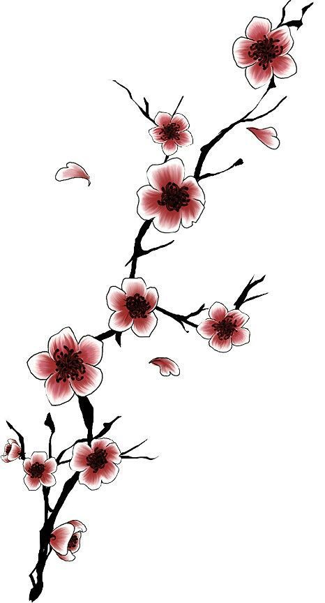 14 best cherry blossoms images on pinterest tree murals flowering trees and wall clings. Black Bedroom Furniture Sets. Home Design Ideas