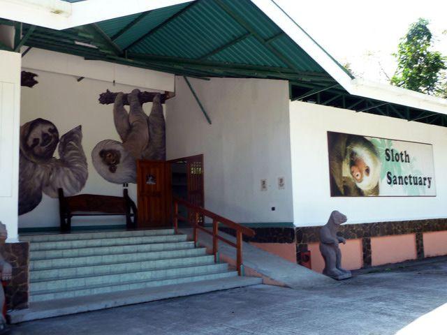The Aviarios del Caribe Sloth Sanctuary in Limon, Costa Rica: Aviarios del Caribe Sloth Sanctuary
