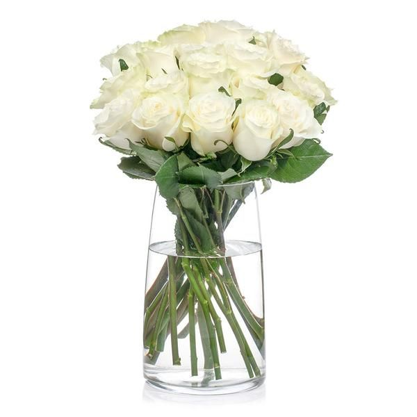 Roses, Bills offers a variety of colours of this popular cut flower.
