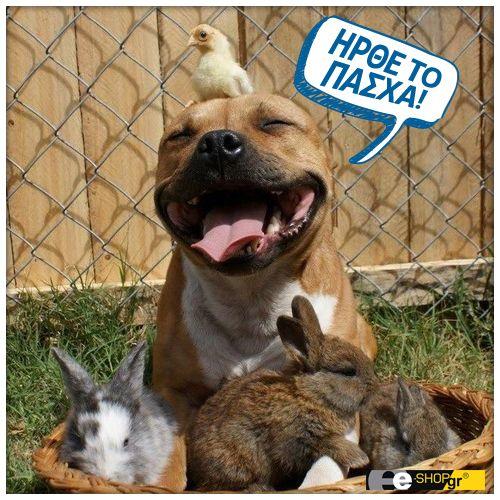 Καλή Ανάσταση και Καλό Πάσχα σε όλους!