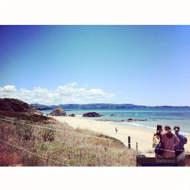 Tawharanui Beach, New Zealand