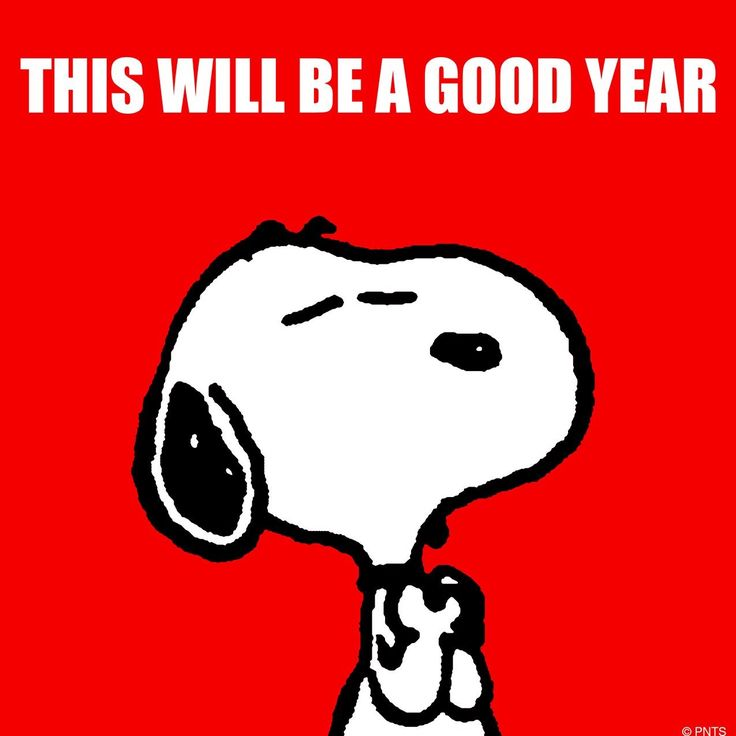 'This will be a good year' #HappyNewYear #Snoopy (๑>◡<๑)