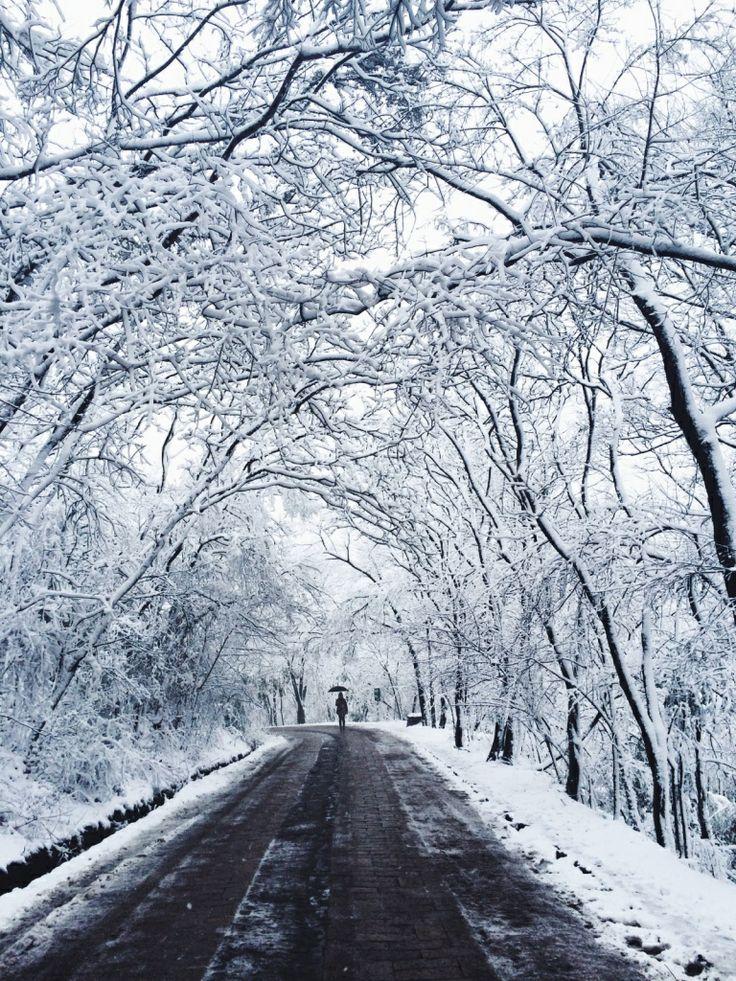 #snowdays
