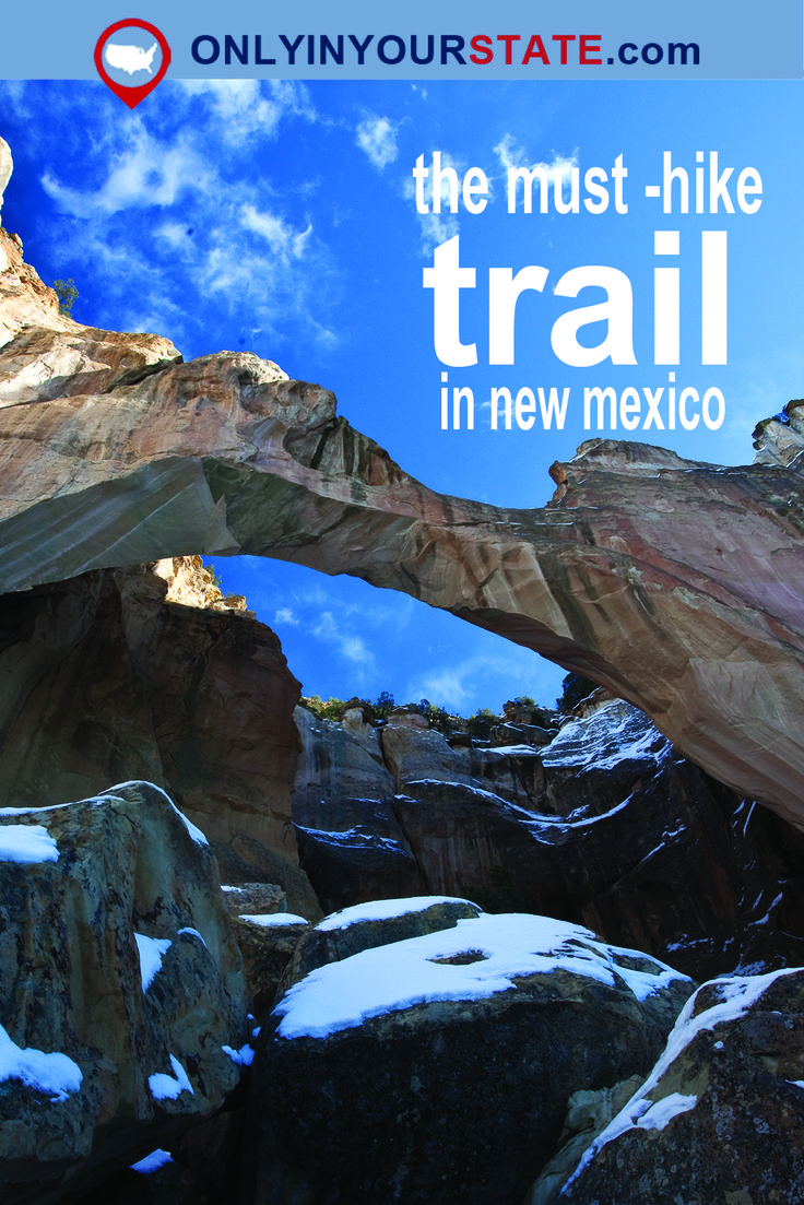 Travel | New Mexico | Hiking | Trails | Adventure | Treks | Unique | Exploring | Hikes | Best Trails | Scenic | Gorgeous | Fitness | Getaway | Summer