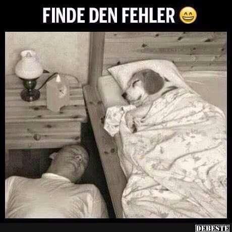 FEHLER!!!