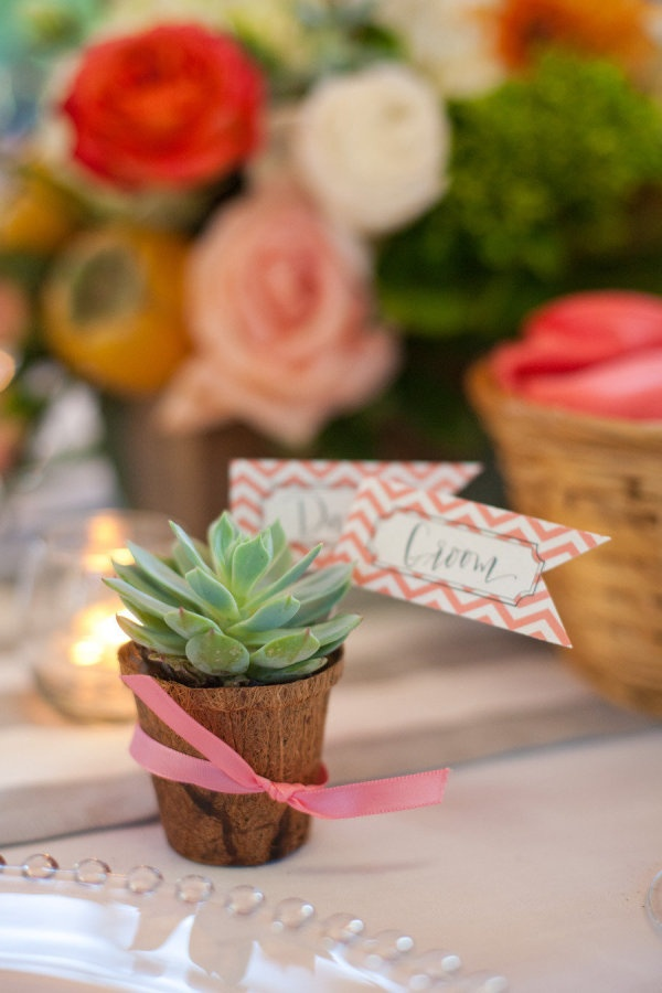 Succulents double as place cards + favors! Photography By / kristinbyrum.com, Event Coordination By / aswankyaffair.com