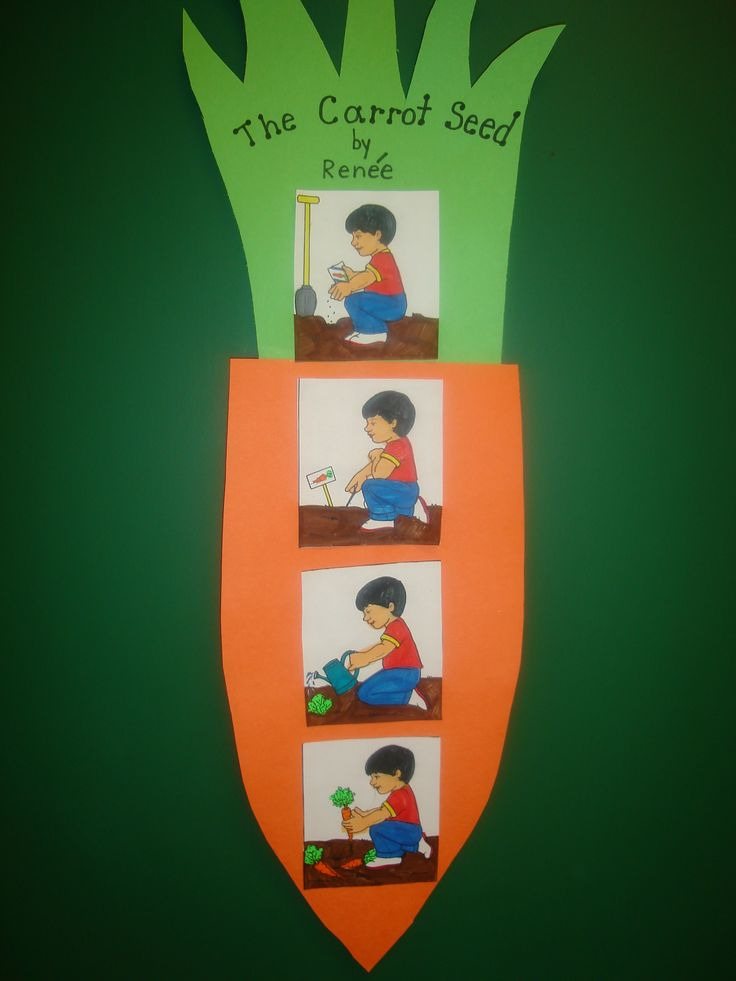 The Carrot Seed by Ruth Krauss    Below is an extension for The Carrot Seed.       Students colored, cut, and glued lifecyle of a carrot    seed pictures in order on a carrot pattern.