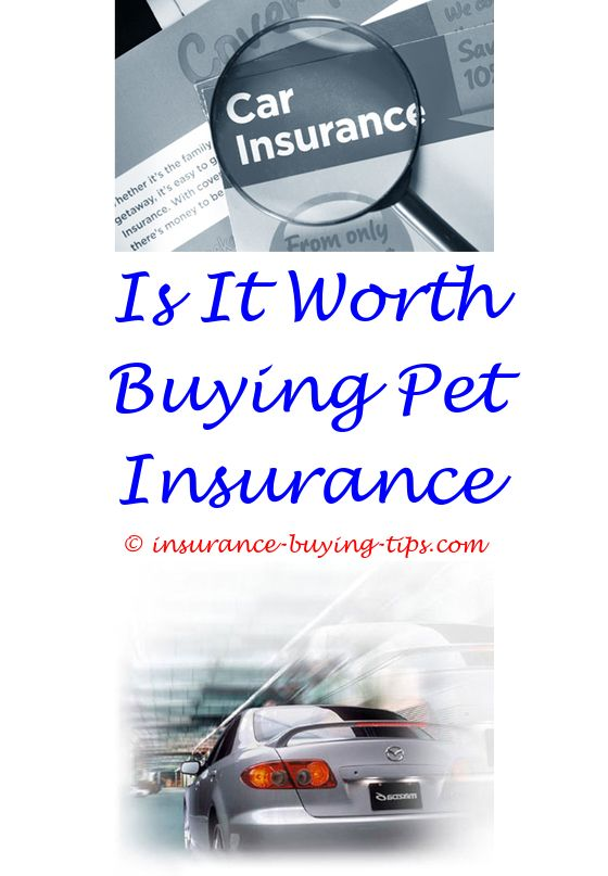 1137 best Best Buy Insurance images on Pinterest