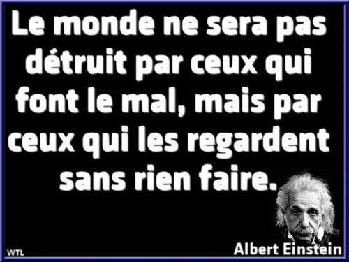 EINSTEIN Albert   ''Le monde ne sera pas,détruit...''.jpg