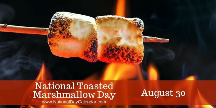 August 30, 2015 – NATIONAL TOASTED MARSHMALLOW DAY