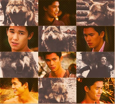 78+ images about JACOB'S FAMILY on Pinterest | Twilight ... Twilight Wolf Pack Seth