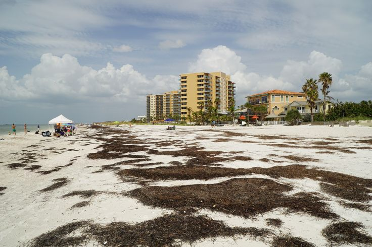 Clearwater Beach - Leven in Florida