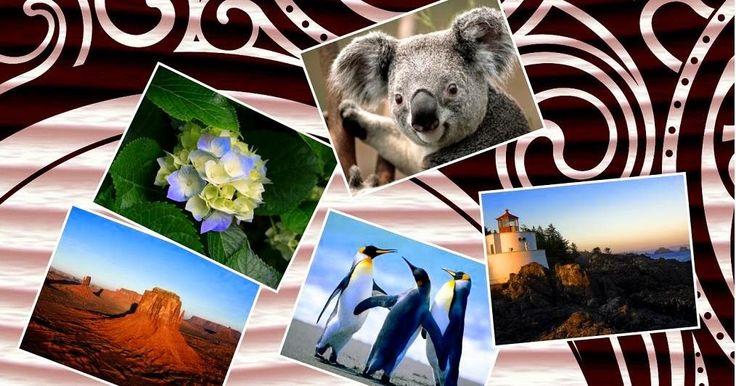 تحميل برنامج دمج الصور مع بعضdownload free photo collage maker Program merge photos  تحميل برنامجFree Photo Collage Maker يتيح لكم امكا...