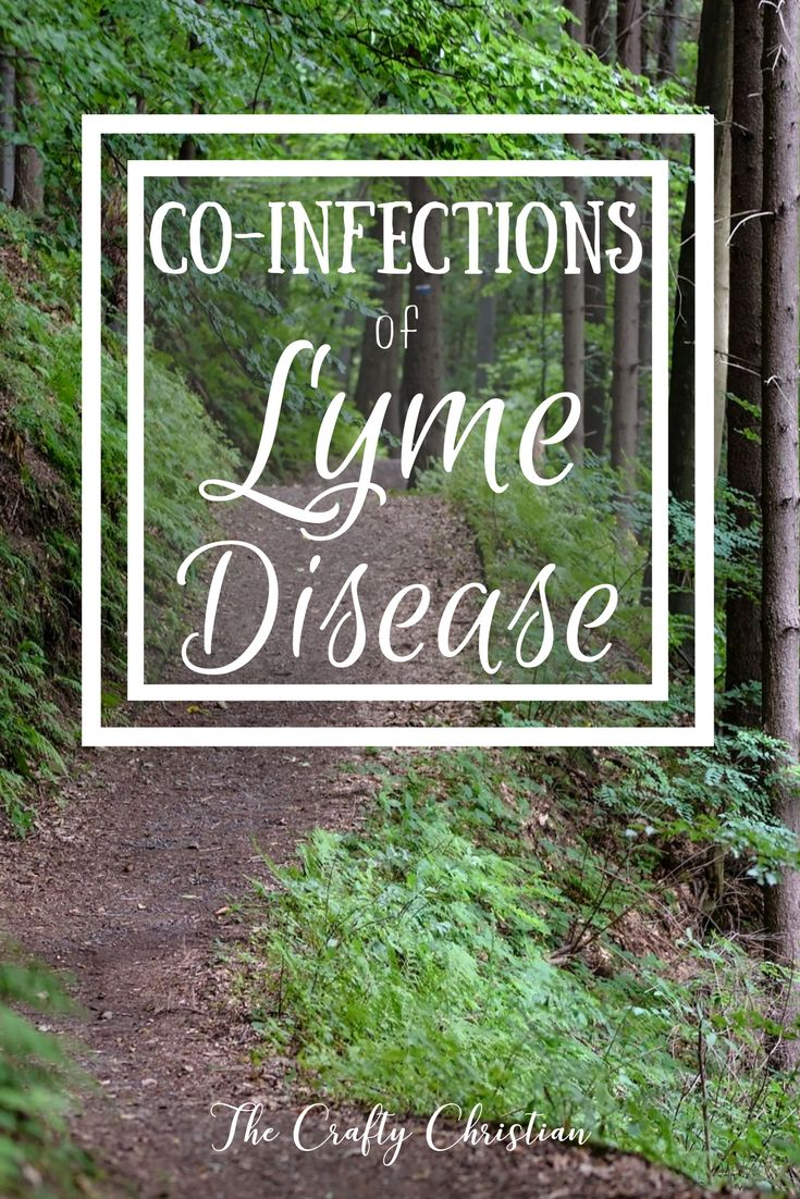 """Lyme disease is an epidemic. The CDC reports 300,000 new cases every year, and that's only the ones that are diagnosed. We know that there are a lot of cases that go undiagnosed because Lyme testing (Borrelia burgdorferi) is so unreliable, so the number of people who contract it every year is likely much higher. It is called """"the great imitator"""" for good reason; its symptoms range far and wide, and can often be attributed to countless other conditions. And when you take into account the…"""