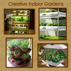 Indoor Vegetable Gardening - You can have vegetables all year long. No yard? Grow fresh vegetables indoors.