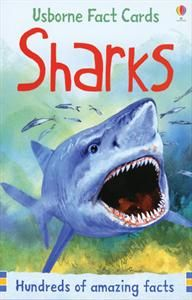 SHARK WEEK! Shark Fact Cards Set. What was the biggest shark ever? Which shark can disable a submarine? Why do some sharks glow in the dark? Open this pack to find out! Includes 50 cards.$10