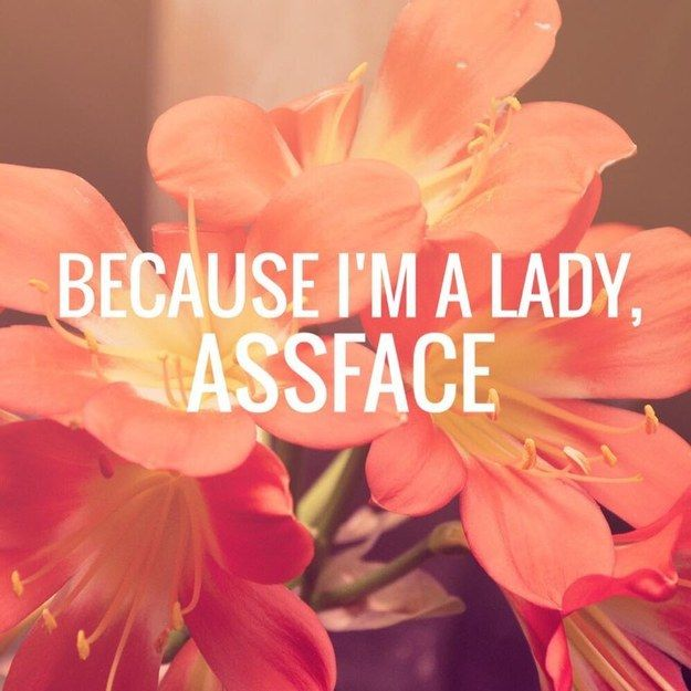 Because I'm a Lady, Assface - If Karen Walker Quotes Were Motivational Posters