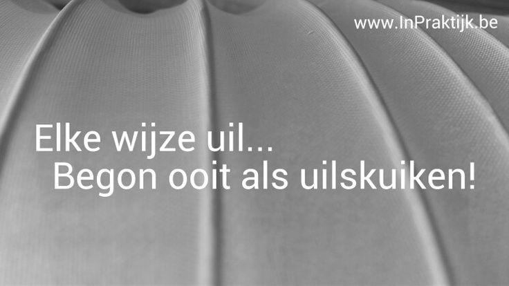 Citaten Over Uilen : Beste ideeën over uil citaten op pinterest uilen