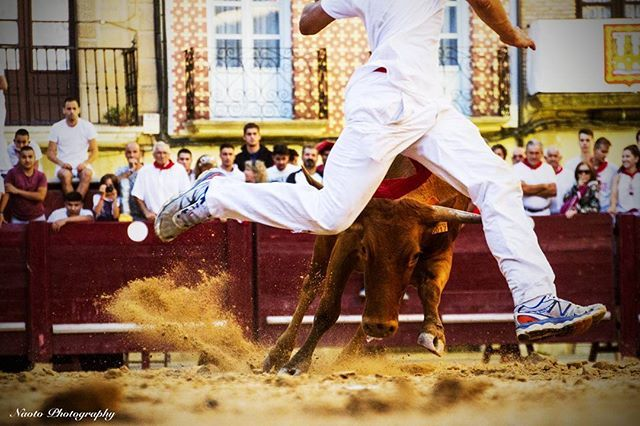 ▪Way to the Santiago de Compostela / Bull fighting ▪Spain 2016 スペインで闘牛やってた 隣で見てたおっちゃんにお前も出ろって言われたけど断りました まだ死にたくないもん #Spain #nature #camino #travel #travelphoto #travelgram #instatrip #igersjp #instatravel #backpacker #friendship #tokyocameraclub #visitspain #bull #fighting #pilgrimage #walktosantiago #caminofrances #スペイン #闘牛 #カミーノ #巡礼 #旅 #バックパッカー #ファインダー越しの私の世界 #海外旅行 #写真好きな人と繋がりたい #カメラ好きな人と繋がりたい #自然 #写真撮ってる人と繋がりたい