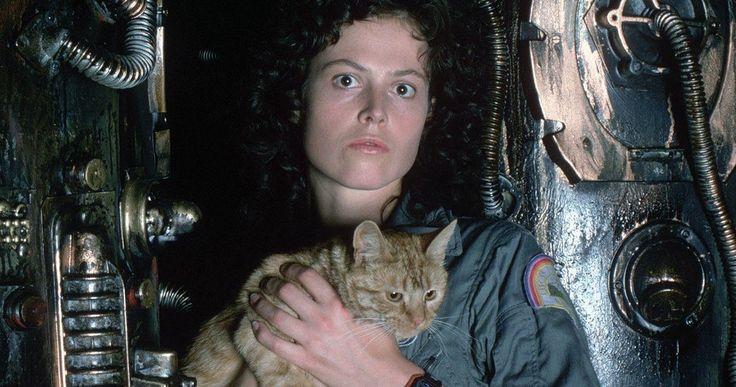 Ridley Scott Wanted Ripley to Die in Original Alien -- Director Ridley Scott reveals that Ripley died in the original ending of his 1979 classic Alien. -- http://movieweb.com/alien-movie-1979-original-ending-ripley-dies/