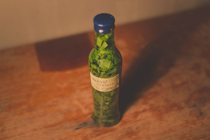 Would you like to preserve the strength of wild garlic for as long as you can? #wildgarlic #ramsons #recipes #homemade #tincture #extract #healing #alternativemedicine #health #drops