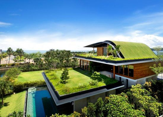 Taking Green Living literally!: Green Home, Rooftops Gardens, Houses, Architects, Greenroof, Green Roof, Gardens House, Green House, Roof Gardens
