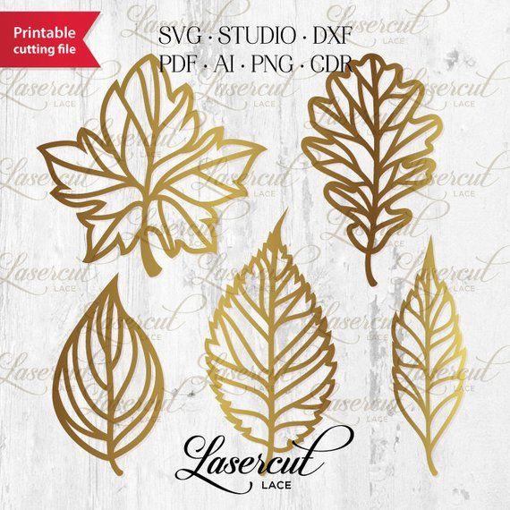 Fall Leaves Svg Lasercut File Botanical Foliage Set Vector Etsy Leaf Stencil Fall Leaf Wreaths Paper Flower Template