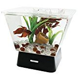 Tetra 29050 LED Betta Tank 1-Gallon