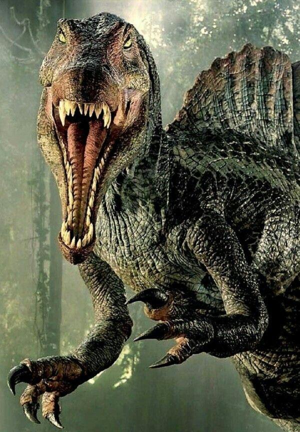 Pin De Adorawolf En Dinosaurios Jurassic World Park Y Otros Dinos En 2020 Fotos De Dinosaurios Animales De La Prehistoria Espinosaurio Acerca de los animales en extincin. dinosaurios jurassic world