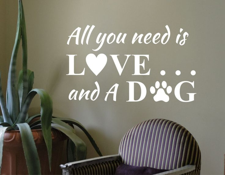 Vinyl Wall Lettering Need Love and A Dog Pet Owner Heart Paw Decal Quotes