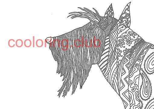 dog coloring page with a lot of details by cooloringclub on etsy