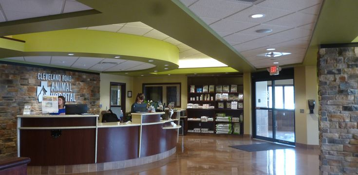 vet clinic interior design    Leading architects in animal hospital design with 50 years' experience …