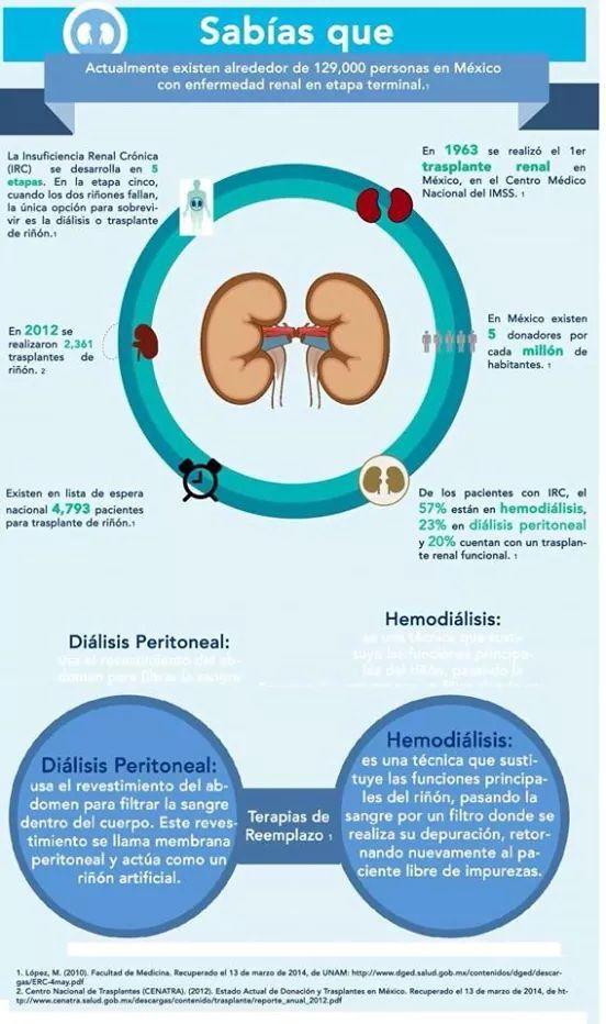 Insuficiencia renal cr nicas en m xico nutricion y for Alimentos prohibidos para insuficiencia renal