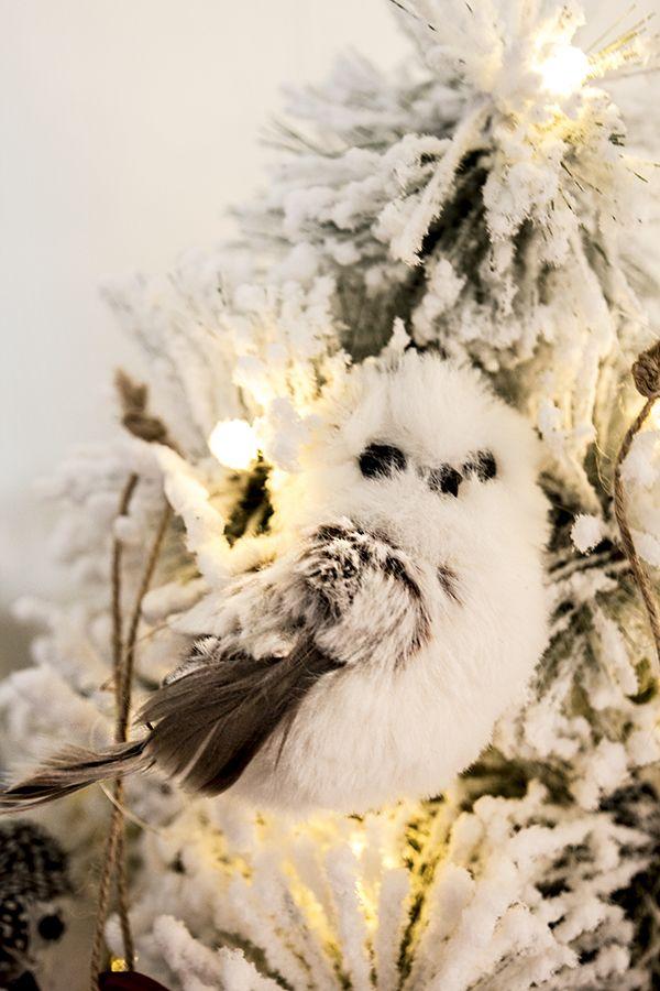 Herlig liten snøugle, hvit
