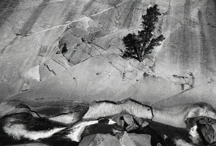 Ansel Adams, 'Juniper and Cliffs, Upper Merced River Canyon, Yosemite National Park', 1936