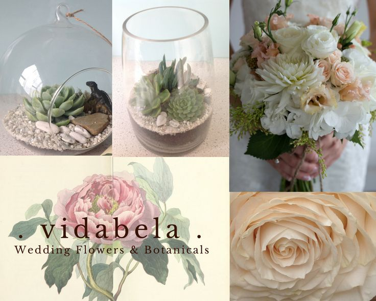 Vidabela Wedding Flowers & Botanicals  Wedding flowers at reasonable prices and beautiful botanicals for your home or office. 021 075 8740 www.vidabela.co.nz www.facebook.com/pages/Vidabela-Wedding-Flowers-and-Botanicals