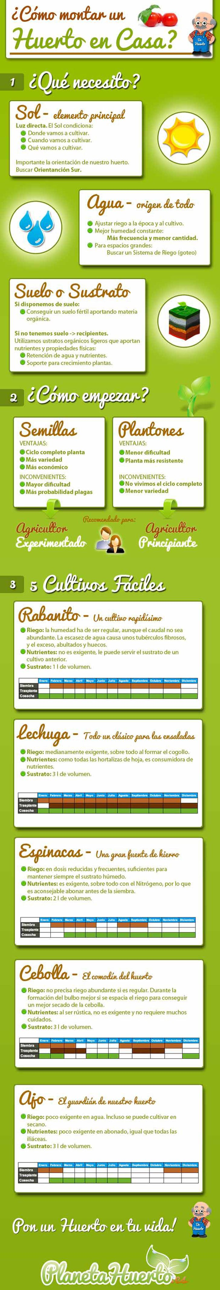 infografia-como-montar-huerto-en-casa