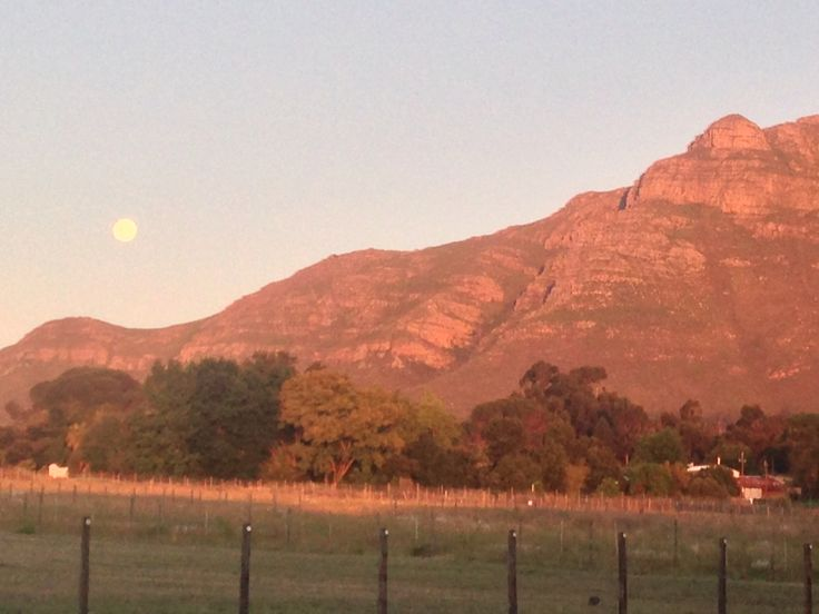 Moon rising over the estate