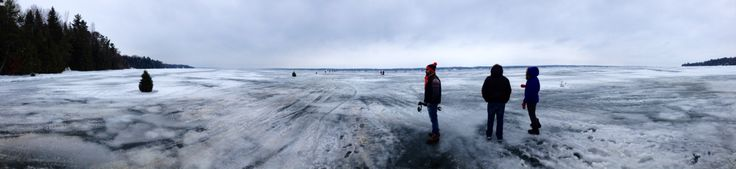 La era del hielo