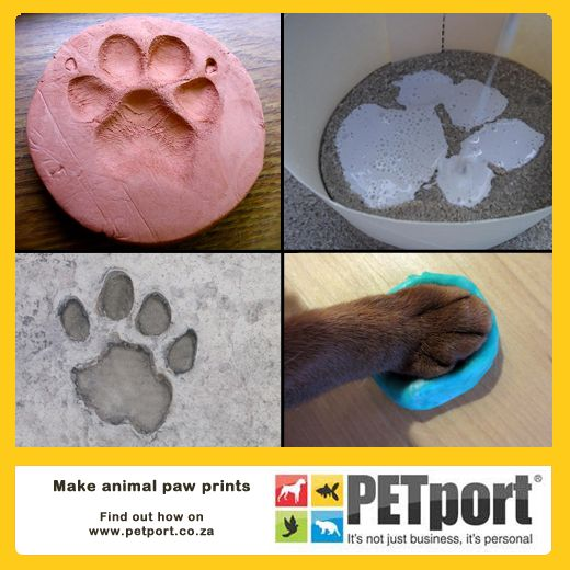 Create a unique and safe paw print mould for your pet using this mixture of flour, salt, water, vegetable oil and food colouring!